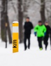 10 Epic Winter Running and Adventure Races in Michigan