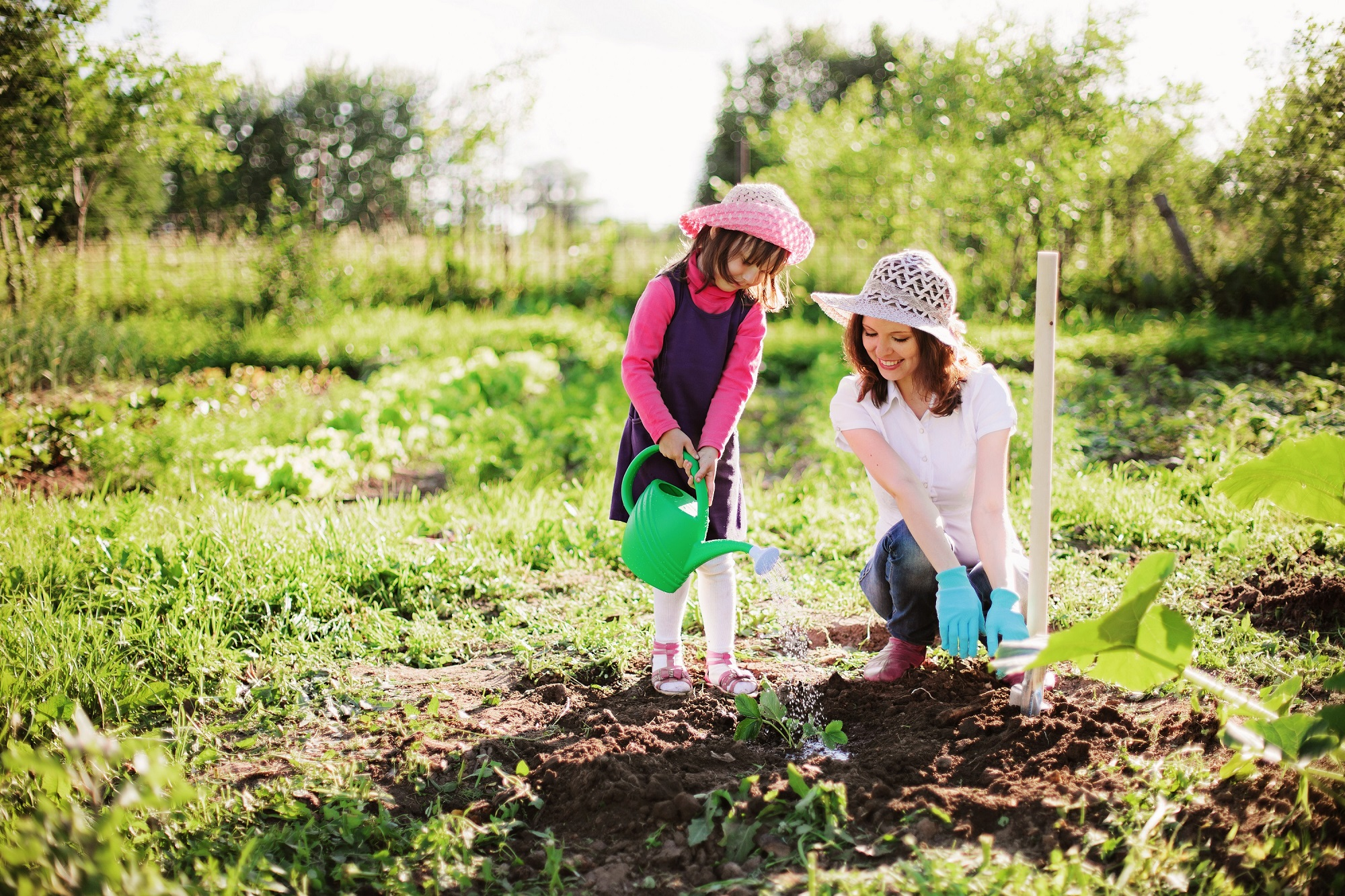 Priority Health - Personal Wellness - Fun Summer Activities - Gardening