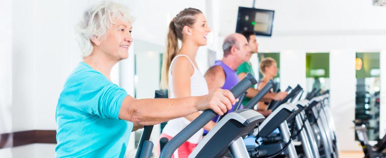 Healthy Summer Activities for Seniors in Michigan