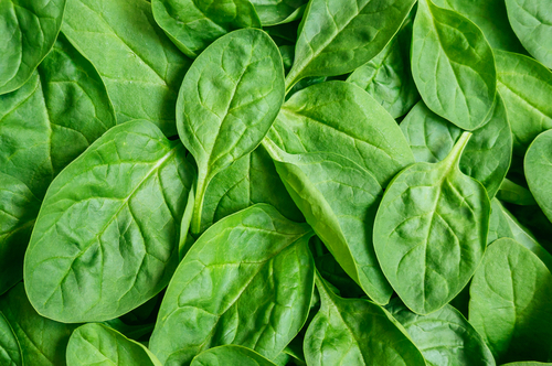 Priority Health_Personal Wellness_Michigan Farmers Market_Farmers Market Recipes_Spinach