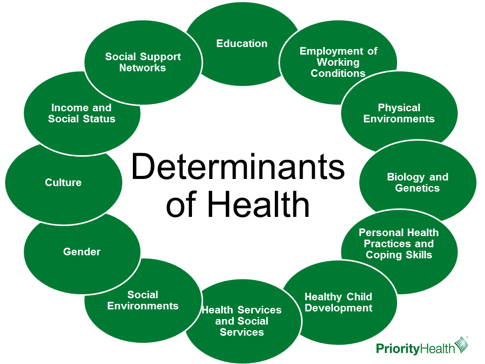 Opioid Determinants of Health
