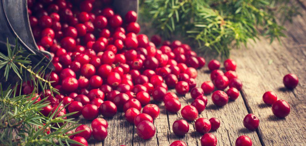 The Health Benefits of Cranberries
