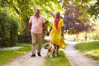 Medicare in Michigan couple walking dog