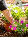 3 Earth-friendly Habits with Health Benefits