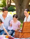 A Picnic Basket Full of Healthy Recipes