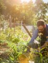 Get Moving Michigan: Yardwork as a Workout
