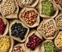 Veggie Tales: Breathtaking Beans