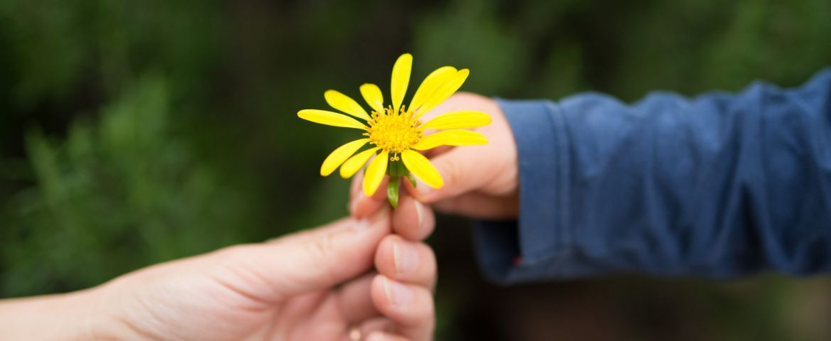 Be Kind: Boosting Kindness for Personal Wellbeing