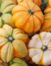 3 Fall Recipes with Harvest Fruits and Vegetables