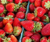 Strawberries in Season: Healthy Recipe Roundup